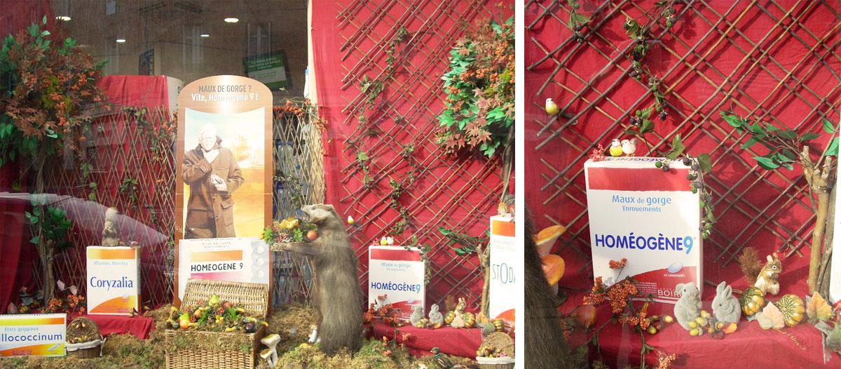 étalagisme vitrine pour un commerce en centre-ville